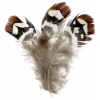 Pheasant Feather Brown Reeves